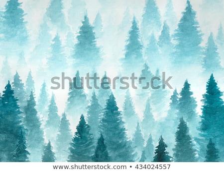 winter forest at dusk stock photo © kotenko
