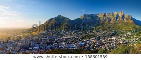 Panoramic view of the city in Dawn (Sunrise in Cape Town, Table  Stock photo © meinzahn