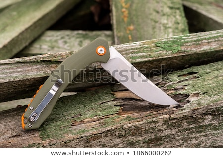 knife with a wooden handle green Stock photo © mayboro1964