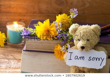 I am sorry message Stock photo © stevanovicigor