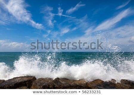 Temizlemek yeşil dalgalar plaj güzellik yaz Stok fotoğraf © morrbyte