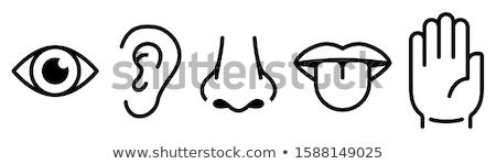 ストックフォト: 味 · 聞く · 美しい · ピンナップ · ビキニモデル · lp
