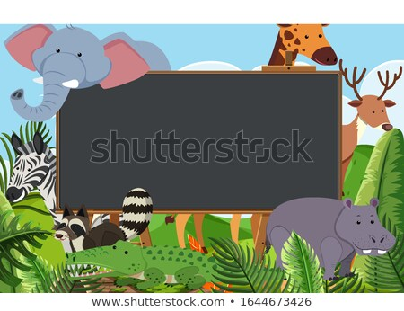 Border template with many giraffes in the field Stock photo © bluering