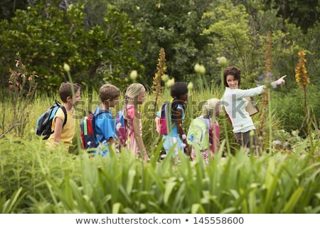 Student pointing at tree of knowledge. Stock photo © RAStudio