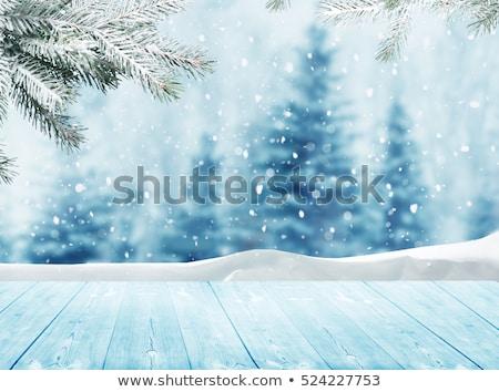tél · éjszaka · fagyott · erdő · hó · hóvihar - stock fotó © psychoshadow