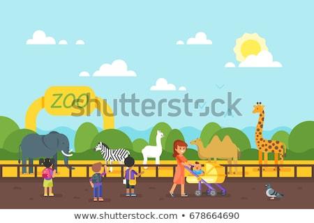 Ninos zoológico vector estilo ilustración animales Foto stock © curiosity