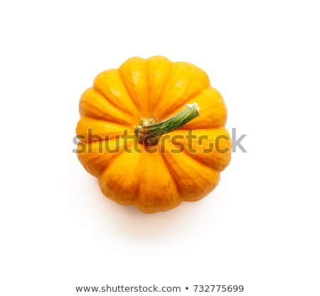 small orange pumpkins Stock photo © Digifoodstock