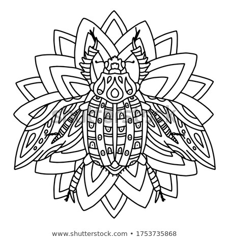 Hamamböceği vektör dizayn hayvan örnek tshirt Stok fotoğraf © Hermione