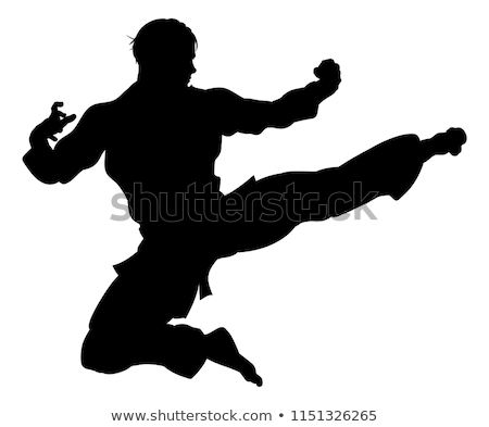 Foto stock: Karatê · voador · chutá · homem · silhueta · ilustração