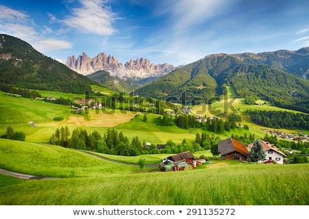деревне пейзаж Альпы Италия живописный дома Сток-фото © OleksandrO