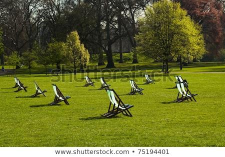 Pont chaises parc Londres arbre herbe Photo stock © IS2
