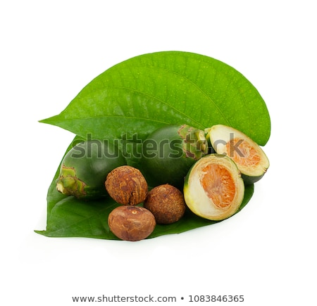 fresh betel nut on betel leaf isolated on white background Stock photo © ungpaoman