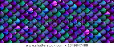 Parel paars Blauw zeemeermin schalen Stockfoto © MarySan