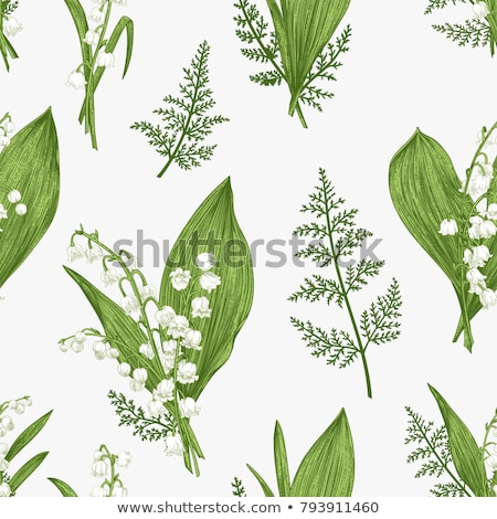 pattern with lily of the valley Stock photo © Artspace