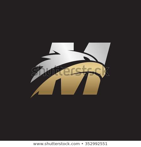 Letra m Águia cabeça logotipo criador design de logotipo Foto stock © krustovin