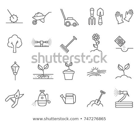 bahçe · bahçe · aletleri · nesneler · simgeler · vektör - stok fotoğraf © netkov1