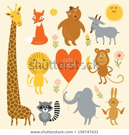 Cartoon giraffen dier groep illustratie Stockfoto © izakowski