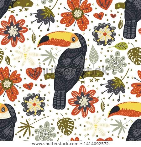 エキゾチック 鳥 動物 夏 シンボル ストックフォト © robuart