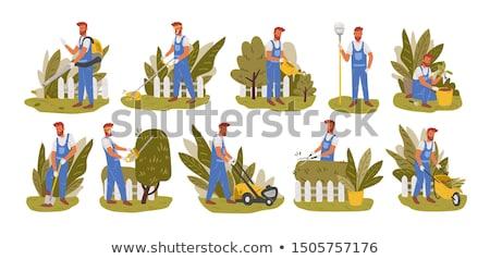 ストックフォト: 漫画 · 植木屋 · 植物 · ツリー · 女性 · プロ