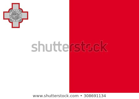 Malta flag, vector illustration on a white background Stock photo © butenkow