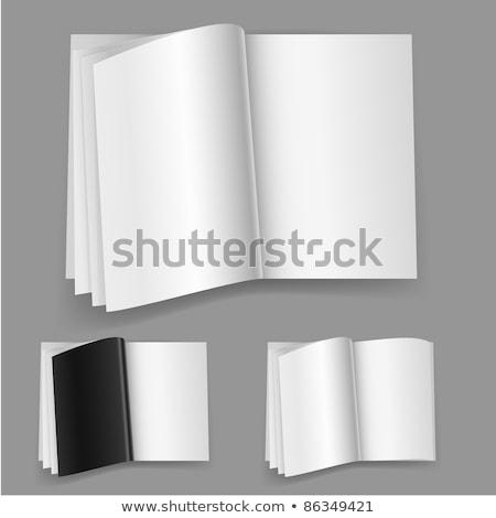 zestaw · wektora · realistyczny · ilustracja · odizolowany - zdjęcia stock © dvarg
