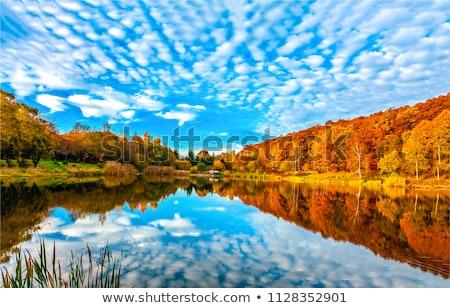beautiful autumn river stock photo © joyr