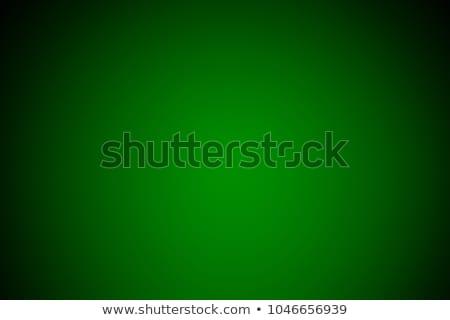 Suave verde ilustración alto detalle Foto stock © REDPIXEL