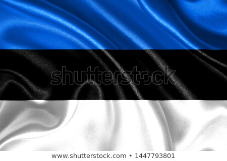 политический флаг Эстония Мир стране Сток-фото © perysty