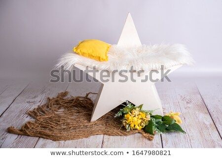 Stars and Stripes Portrait Heart Stock photo © fenton