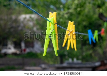 plastic clothes pin stock photo © ozaiachin