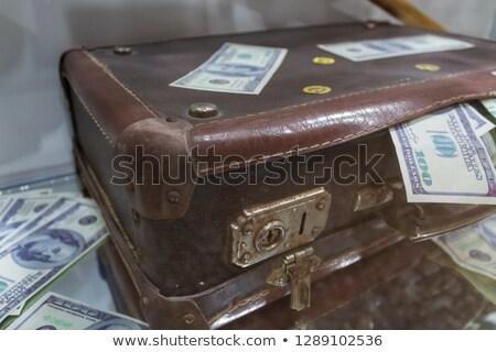 mujer · maletín · dinero · imagen · espalda - foto stock © gregory21