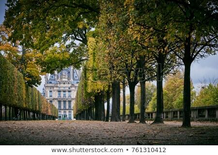 Paris kadın sanat yeşil taş park Stok fotoğraf © jakatics