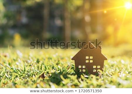 счастливым · зеленый · домой · иллюстрация · улыбаясь · теплица - Сток-фото © Harlekino