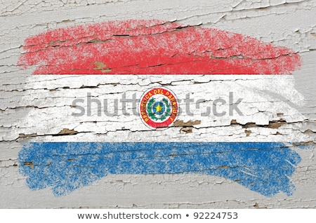 Flag Of Paraguay On Grunge Wooden Texture Painted With Chalk Foto stock © vepar5