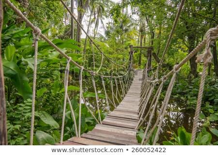 görmek · ahşap · köprü · dağ · nehir · sonbahar - stok fotoğraf © ruslanomega