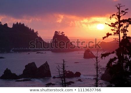 Kaliforniya ABD yaz okyanus kaya tekne Stok fotoğraf © snyfer