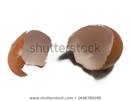 Eggshell open in two parts Stock photo © lunamarina
