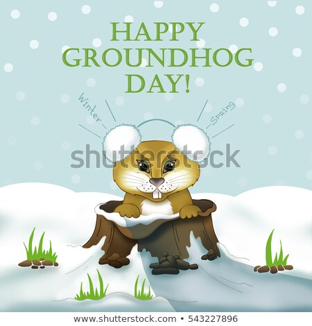 marmot on snowy land stock photo © Antonio-S