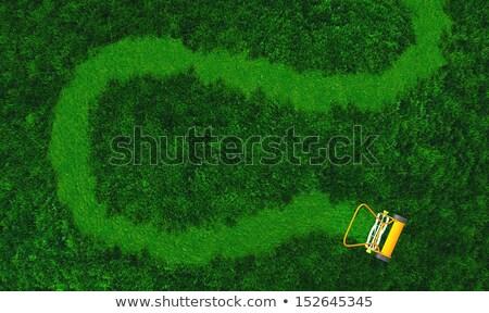 Yol üst görmek çim Stok fotoğraf © TaiChesco