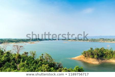Lago Bangladesh secas árvore floresta natureza Foto stock © bdspn