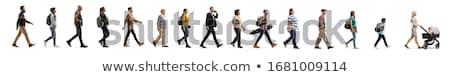 the cutout Stock photo © flipfine