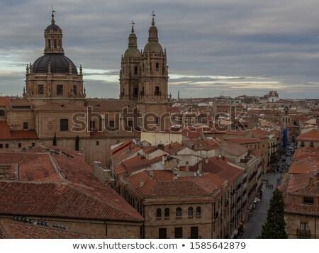 Kő utca kupola új katedrális Spanyolország Stock fotó © billperry