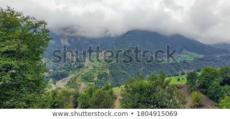 verano · paisaje · montanas · Azerbaiyán · agua · árbol - foto stock © elnur