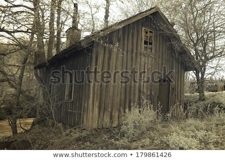 Komin kabiny parku Virginia Zdjęcia stock © wildnerdpix