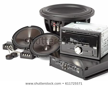 Modern car audio systems isolated Stock photo © ozaiachin