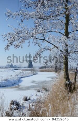 Sneeuw gekleurd oude kerk Duitsland Stockfoto © lkpro