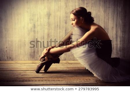 professionnels · danseur · de · ballet · performances · ballerine · fond - photo stock © master1305