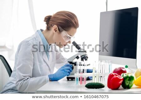 Tudós berendezés zöldségek laboratórium technológia Stock fotó © wavebreak_media