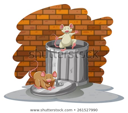 Rats playing with the trashbin Stock photo © bluering
