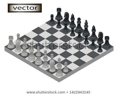 Feketefehér sakk izometrikus kilátás izolált fehér Stock fotó © Evgeny89